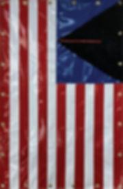 Aimee Joaristi, Pubic Gringo Flag, 2019,