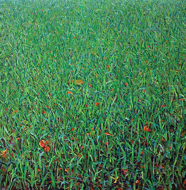 Green Field With Flamboyant Blossom copy
