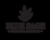 BSCC transpaent logos with sage greenArtboard 4_3x.png