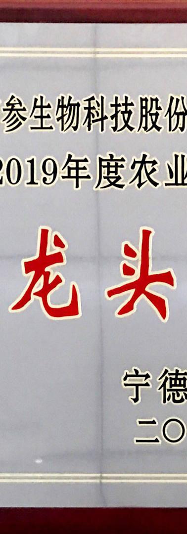 11、柘参(市级龙头企业).JPG