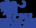 Carolina Musculoskeletal Institute