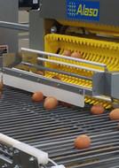 EggCollector2.jpg