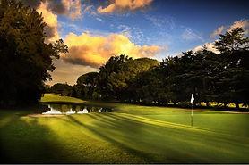 Olivos-golf.JPG
