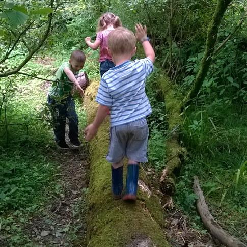 9h30 - Les enfants choisissent leur activité; certains décident d'explorer les environs en petit groupe. Entraide et coopération sont les maîtres mots de ces aventures.