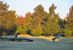 Newman-golf.