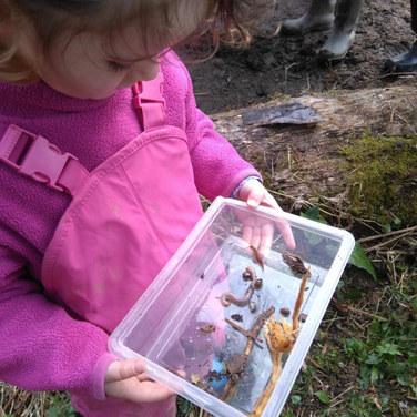 L'histoire sur les insectes a inspiré une recherche d'insectes. Les enfants utilisent le matériel laissé à leur disposition pour découvrir leur environnement et tisser un lien fort au monde naturel.