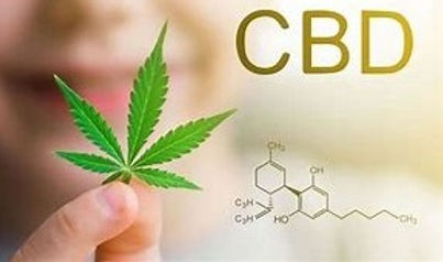 CBD%2520Educational_edited_edited.jpg