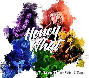 live from the hive album cover.jpg