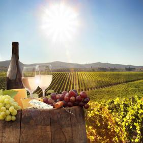 Stellenbosch-private-wine-tours.jpg