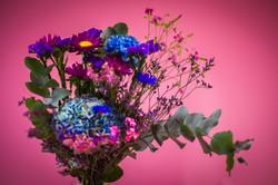 Flowers #11