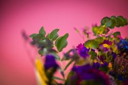 Flowers #7