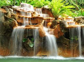 3 Parque Nacional Tortugueros.jpg