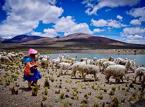 Perú  (11).jpg