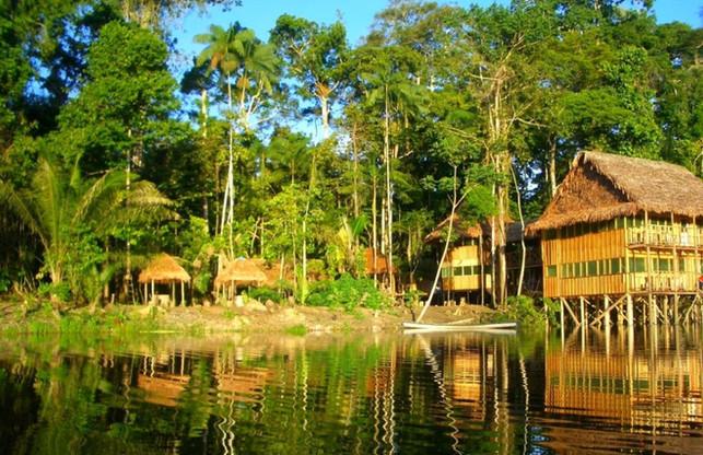 Amazonas-Marasha-1-min-1024x662.jpg