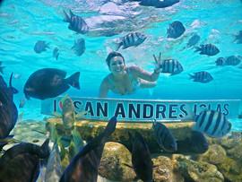 Acuario San Andres
