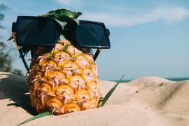 beach-blur-close-up-focus-348523.jpg