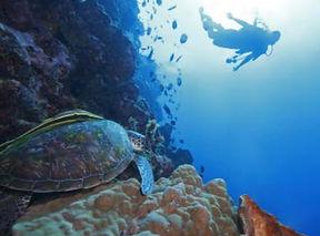 Islas Galapagos (4).jpg