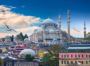 Istanbul_Turkey_Houses_Temples_Birds_Clo