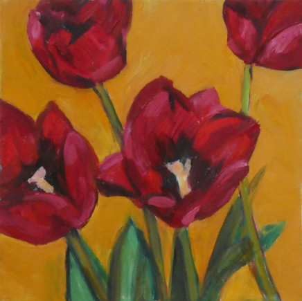 Red Tulips From Cornwall