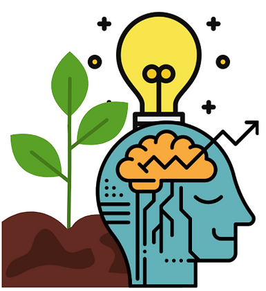 Growth Mindset Development