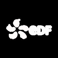EDF LOGO EN NB.png