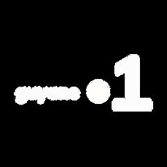 LOGO GUYANE LA 1ER EN NB.png