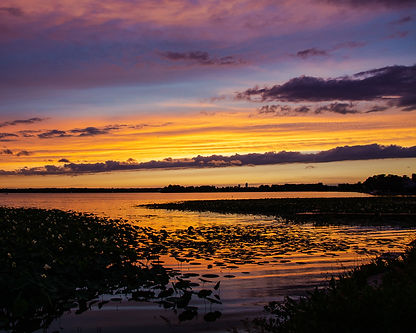Manawa Lilly Sunset 5 Horizontal.jpg