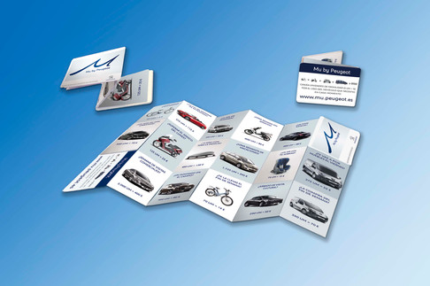 Z-Card Peugeot