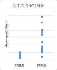 抗Ⅳ型コラーゲンNC1抗体測定結果