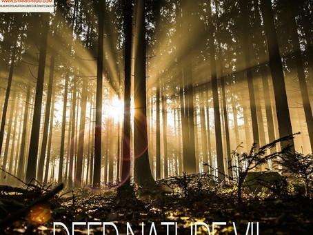 NOUVEL ALBUM 115 RELAXATION LIBRE DE DROIT SACEM STYLE NEWAGE RELAXANT