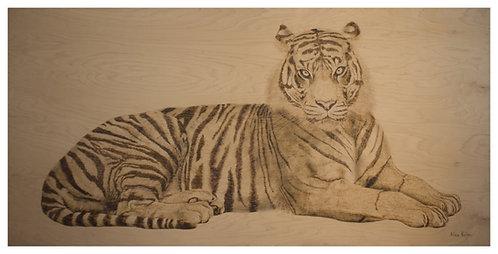 Sophie - Bengal Tiger