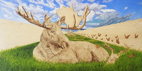 """Time Dilation | Alaska Bull Moose"