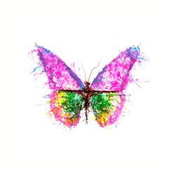 """""""Butterfly"""" - Ink Blown"""