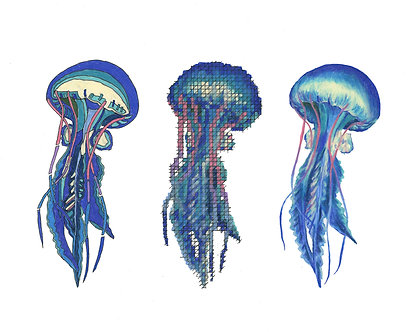 Jellyfish | Triptych Series