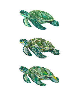 Sea Turtle | Triptych Series