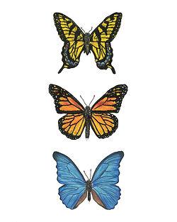 Triptych Series