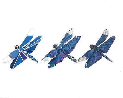 Dragonflies | Triptych Series