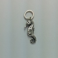 Sterling Silver Seahorse