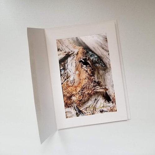 Greeting Card - Bark 1