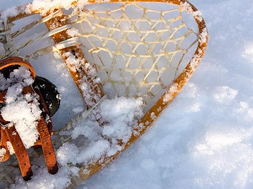"""Snowshoe (8""""x10"""" photograph)"""