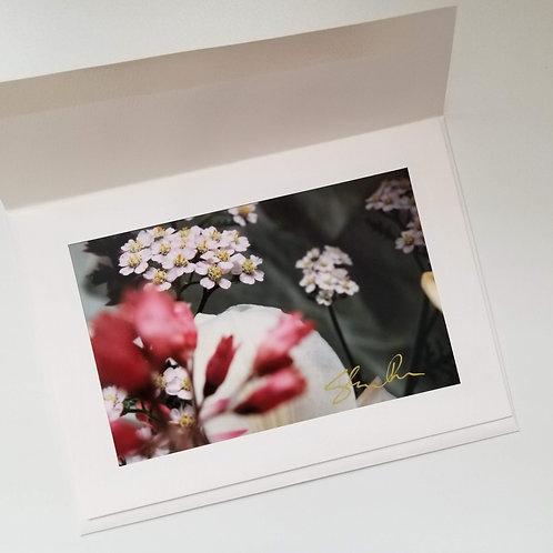 Greeting Card - Blush 3