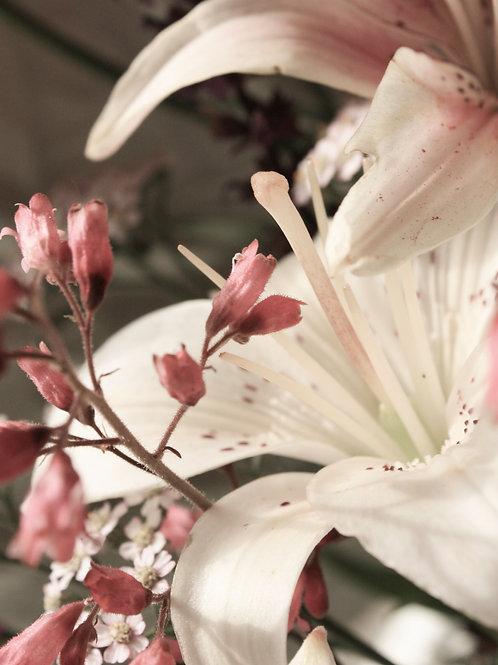 "Flower Study 10 (8""x10"" photograph)"