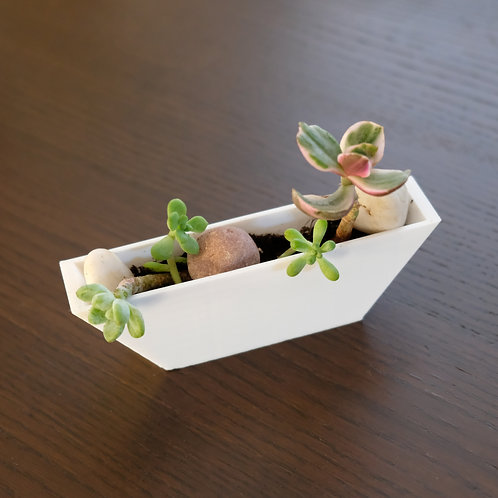Biodegradable 3D Printed Planter - The Canoe