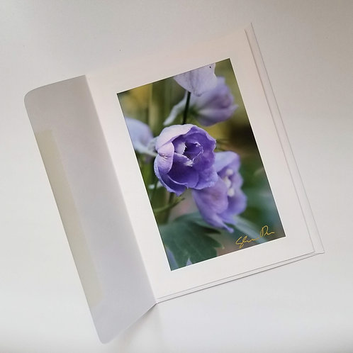Greeting Card - Blossoms and Blueberries 3