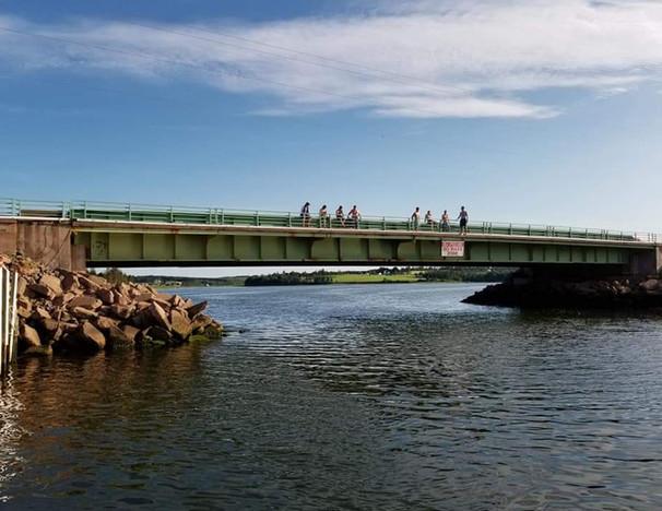 Watch the Bridge Jumpers Go!