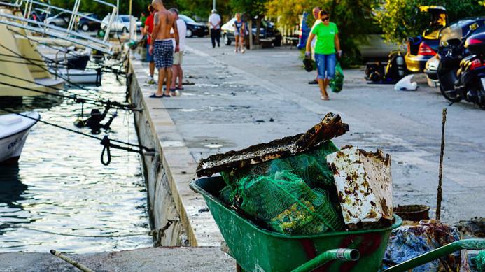 Conservation Marine Split 4.jpg