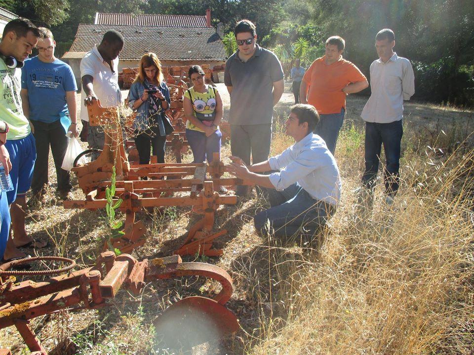 Lisbonne-agriculture solidaire 24.jpg