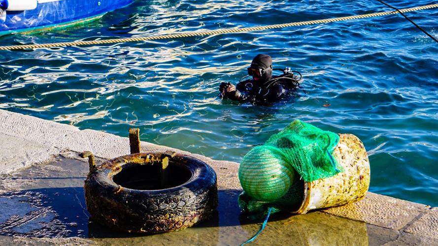 Conservation Marine Split 5.jpg