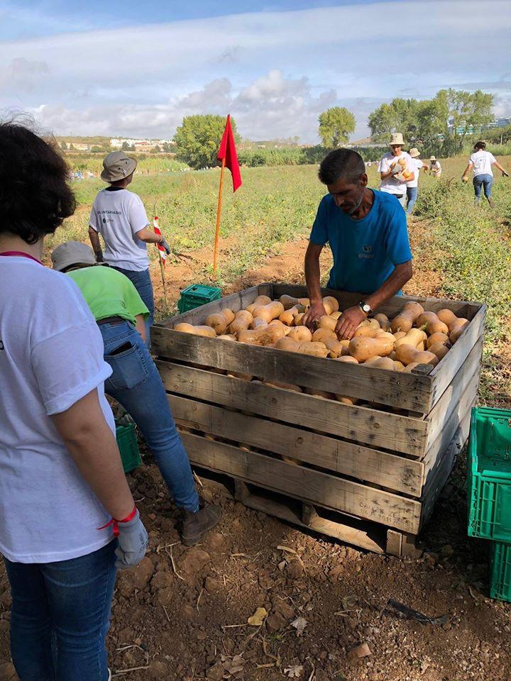 Lisbonne-agriculture solidaire 3.jpg