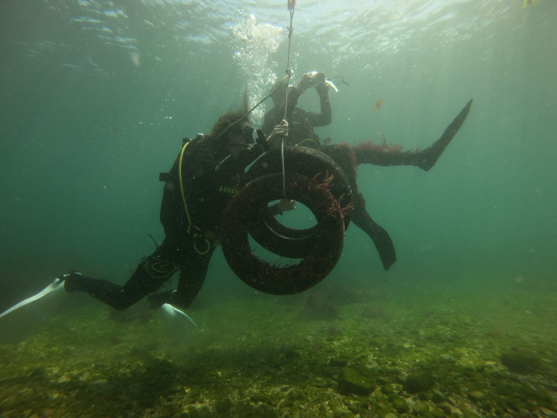 Marine Conservation Program (2).jpeg